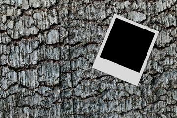 Empty photo frame on wood background
