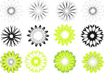 Blüten Muster vektor design elements
