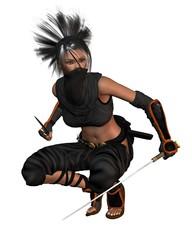 Female Fantasy Ninja - crouching