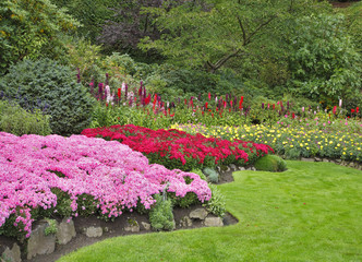 Charming flower bed