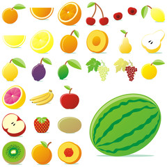 fully editable vector vector fruits with details