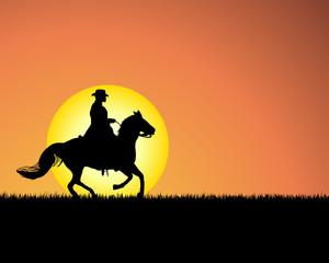 Fototapeta horse on sunset background