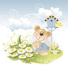 bear and daisies