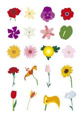 variety plants