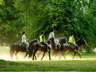 Foto op Plexiglas Paardrijden Riding in the park