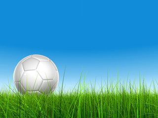3d leather white soccer ball on green grass
