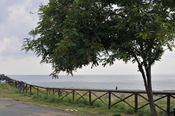 Scenic seafront wood fence, Marina di Camerota, Italy