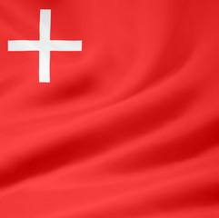 Flagge des Kantons Schwyz - Schweiz