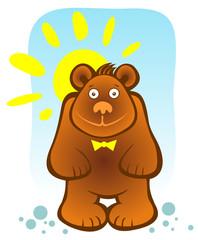 bear and sun