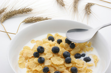 Muesli, milk and blueberries in a white bowl