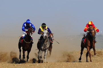 Horse racing (competition), Kfar Kana, Israel