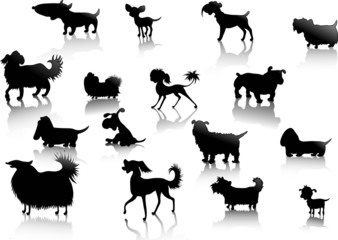 dogs silhouettes in vector