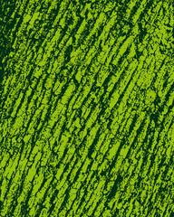 sfondo corteccia