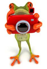 Grenouille avec un appareil photo