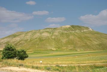 Castelluccio di Norcia. Bellissime colline.