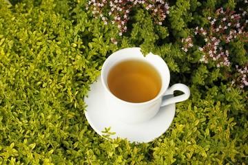 Teacup with herbal tea