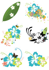 Six design elements with Hawaiian flowers on summer theme