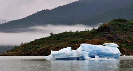 Mendenhall Iceberg
