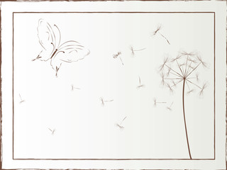 Dandelion and butterfly framed illustration, vector art