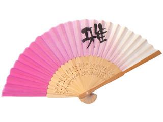 Japanese fan on white background