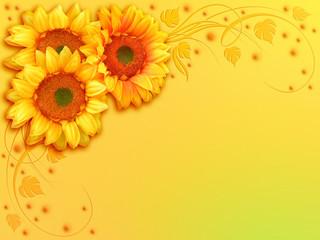 Girasole Sfondo-Sunflower Background-Tournesol Arrière Plan