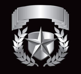 Silver star on shield display