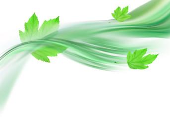 Obraz soft green background and leaves - fototapety do salonu