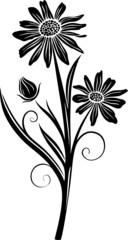 Wandtattoo, Blumen, Blüten, filigran und floral