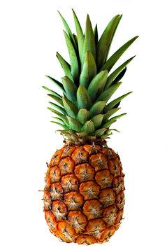 The Ananas