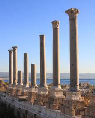 Roman Columns at Tyre (Lebanon)