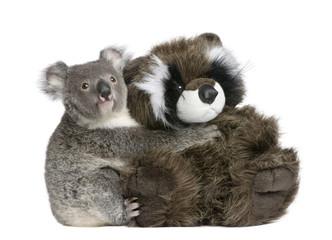 Koala bear hugging teddy bear, in front of white background