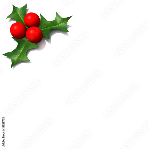 Immagini Pungitopo Di Natale.Pungitopo Di Natale Stock Photo And Royalty Free Images On