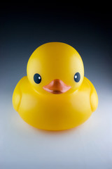 Yellow duck toy for bath