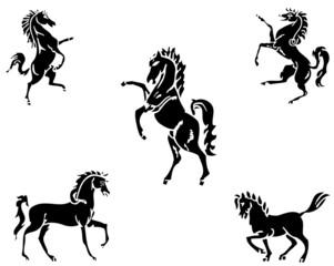 vector horses
