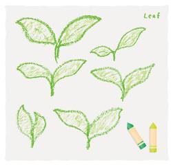 クレヨンで描いた芽