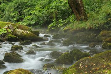Stormy brook