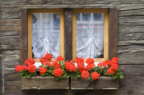 fenster mit blumenkasten stockfotos und lizenzfreie bilder auf bild 17025316. Black Bedroom Furniture Sets. Home Design Ideas