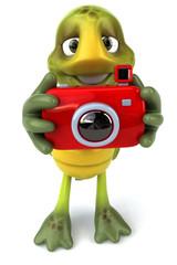 Tortue avec un appareil photo
