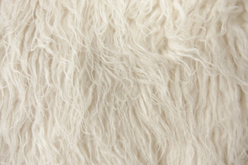 Wood Rug Fiber Close Up