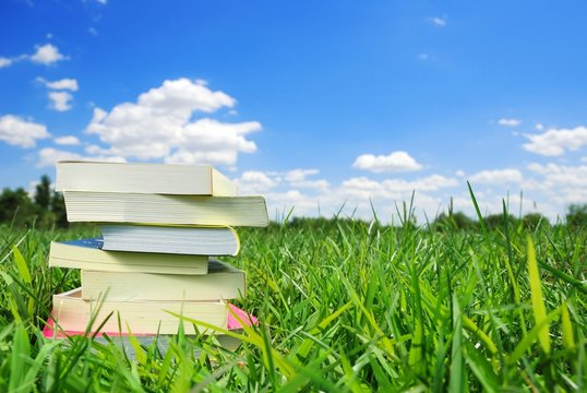 Books on the Meadow