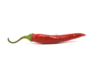 Canvas Prints Hot chili peppers Red pepper isolated on white background