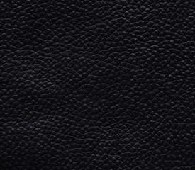 Poster de jardin Cuir black_leather