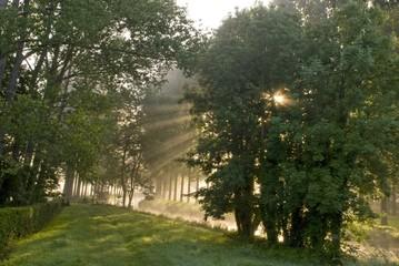 Rayons de soleil dans la brume sur la rivière