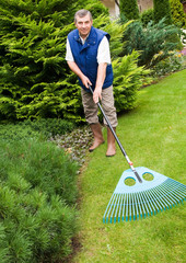 Man raking garden