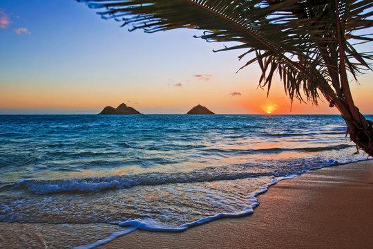Pacific sunrise at Lanikai beach, Hawaii