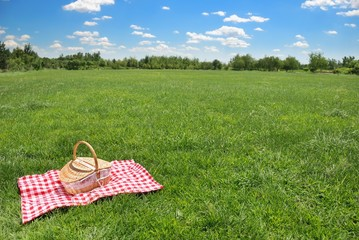 Foto op Canvas Picknick picnic setting on meadow with copy space