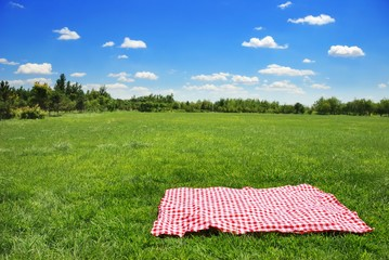 Spoed Fotobehang Picknick picnic cloth on meadow with copy space