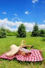 Deurstickers Picknick picnic