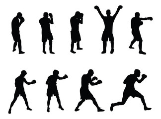 Fototapeta vector image of a selection of boxers obraz