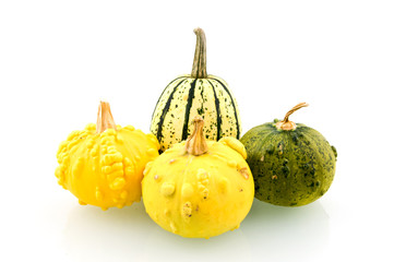 Group squashes